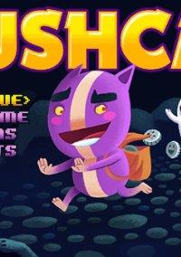 Обложка Pushcat