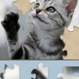 Скриншот Adorable Kitten Jigsaw Puzzle