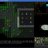 Скриншот Dungeon Crawl Stone Soup