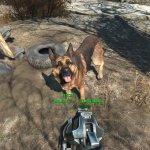 Скриншот Fallout 4 – Изображение 27