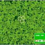 Скриншот Lucky Clover