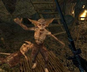 Журналисты узнали об анонсе The Elder Scrolls Online