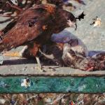 Скриншот Pixel Puzzles 2: Birds – Изображение 6
