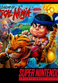 Обложка The Legend of the Mystical Ninja