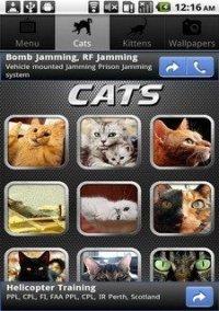 Cat Puzzle – фото обложки игры
