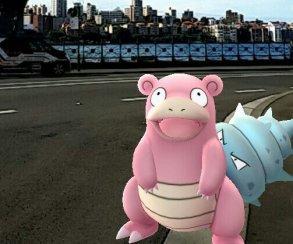 Девушка нашла труп во время игры в Pokemon Go