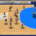 Скриншот Handball Simulator: European Tournament 2010 – Изображение 14
