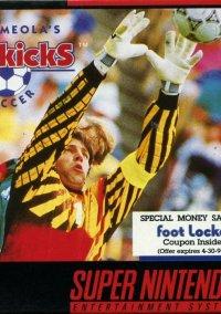 Обложка Tony Meola's Sidekicks Soccer