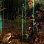 Скриншот Dungeons & Dragons Online – Изображение 14