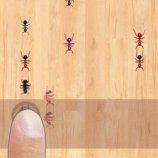Скриншот Tap Tap Ants – Изображение 4