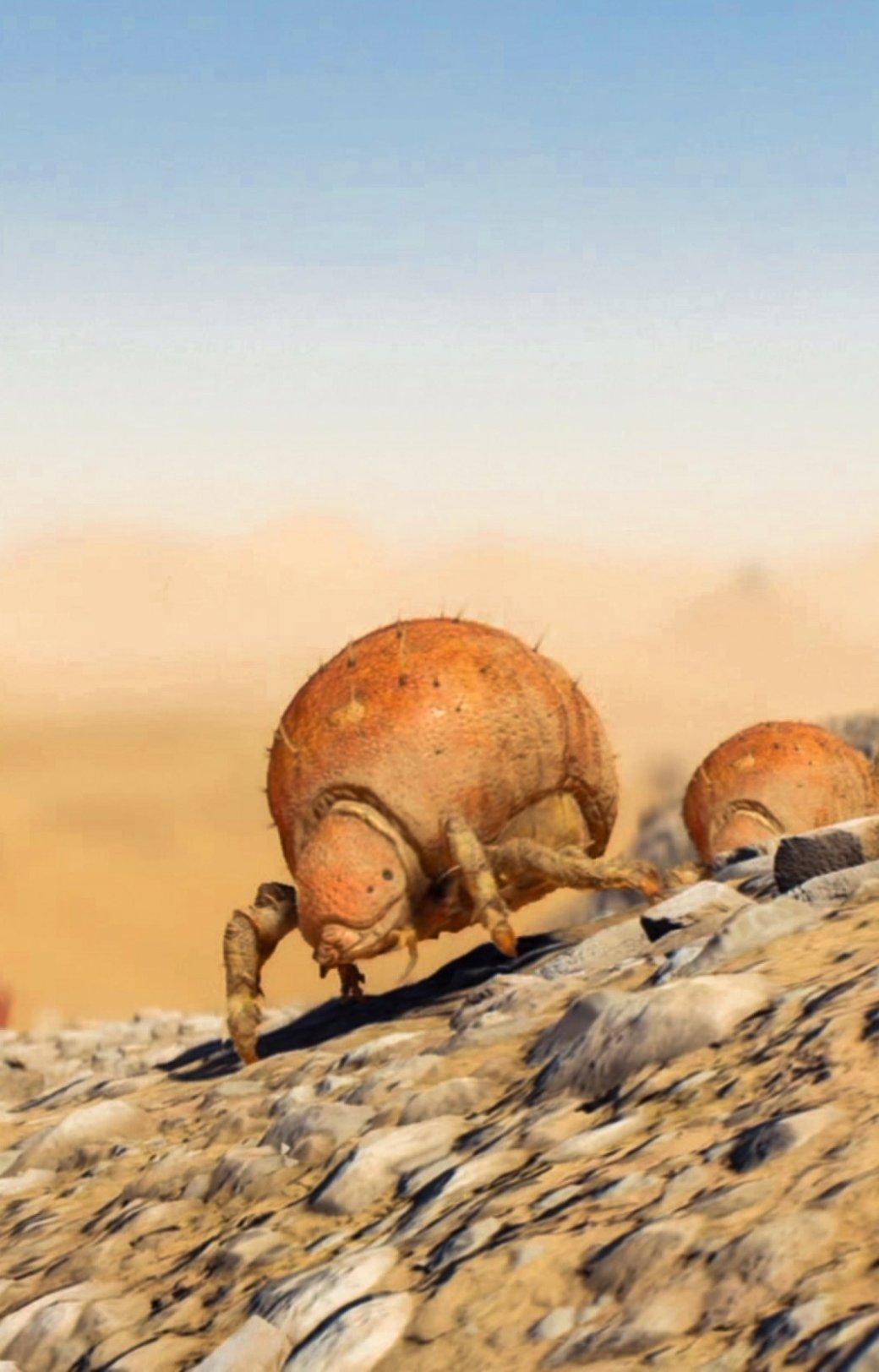 Рецензия на Mass Effect: Andromeda - Изображение 8