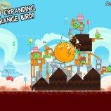 Скриншот Angry Birds – Изображение 3