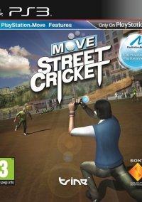 Move Street Cricket – фото обложки игры