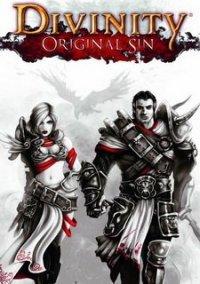 Divinity: Original Sin – фото обложки игры