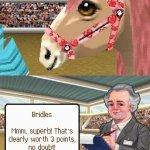 Скриншот Petz: Pony Beauty Pageant – Изображение 2