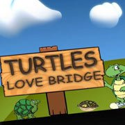 Turtles Bridge – фото обложки игры