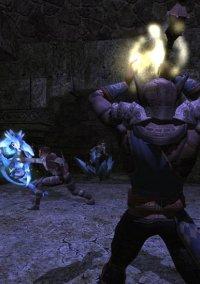 Dungeons & Dragons Online – фото обложки игры