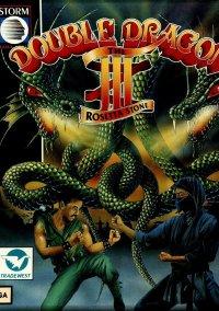 Double Dragon 3 – фото обложки игры