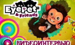Eyepet & Friends. Интервью